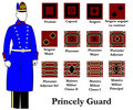 Uniform guards enlisted olt.jpg