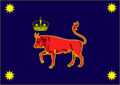 Royal mold army flag.png
